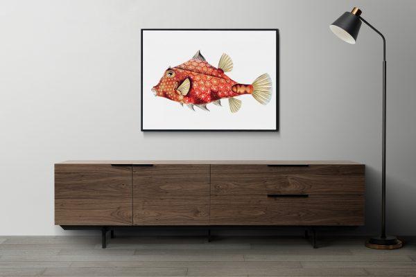 Ernst Haeckel-Boxfish-print on the wall